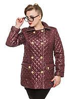 Женская осенняя куртка батал Дина слива 48-62 размеры