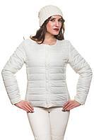 Короткая женская куртка весна-осень Эмма молоко 42-54 размеры