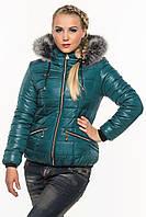 Стеганая зимняя куртка Ксения бутылка 40-52 размеры