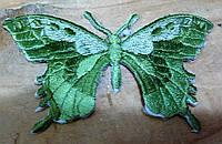 Термонаклейки бабочка 20 шт