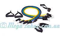 Набор эспандеров для фитнеса Power Band: 5 резиновых жгутов различной жесткости, длина 120см