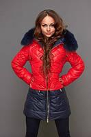 Курточка двухцветная на молнии с меховым воротником