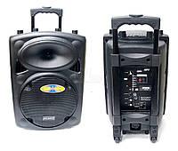 Акустическая система  USB + SD + микрофон караоке AT-S10A