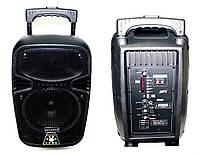 Акустическая система  USB + SD + микрофон караоке AT-S08