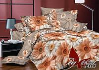 Сатин 1,5-спальное постельное белье с компаньоном ТМ TAG S037