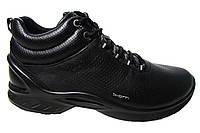 Зимние мужские кроссовки Ecco Biom Р. 41  44 45