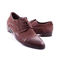 Мужские туфли Etor (36501)