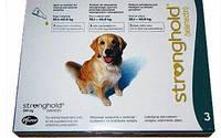 Капли СТРОНГХОЛД 240 для собак 20-40 кг (зеленый) №3