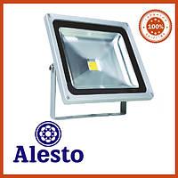 Светодиодный прожектор 50Вт Alesto Eco 3000K, 6000K