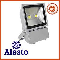 Светодиодный прожектор 100Вт Alesto Eco 3000K, 6000K