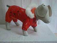 Костюм для собак Забава №2 35х54 (флис)