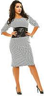 Платье женское полубатал пояс экокожа