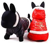 Теплая зимняя куртка с капюшоном для собак Chanel