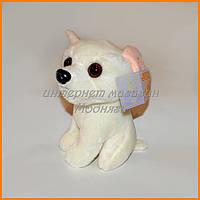 Мягкая игрушка собачка чихуахуа 15 см