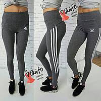 Лосины женские Adidas для фитнеса лайкра разные цвета Lf14