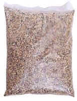 """Семена травы """"Суданка"""" 1 кг"""
