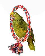 Кольцо - Качеля для попугая