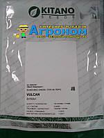 Семена лука на перо Вулкан F1, 20 гр, Kitano (Китано), Япония