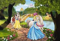 Фотообои на плотной полуглянцевой бумаге для стен 184*127 см из 1 листа: Принцессы на прогулке