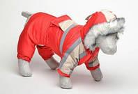 Утепленный костюм для собак Аляска №1 29х46 (синтепон)