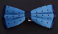 Галстук-бабочка мужская Roberto Cassini сине-голубая