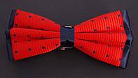 Бабочка мужская Roberto Cassini красно-синяя