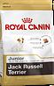 Royal Canin  Jack Russell Terrier Junior 3кг-корм для щенков породы джек-рассел-терьер