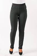 Молодежные трикотажные брюки Даяна зеленые с черным