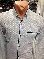 Мужская рубашка модная в горошек белого цвета