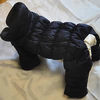 Puppy Angel Posh Pooch комбинезон теплый для собак синий, размер SM