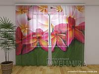 ФотоТюль Тропические цветы