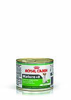 Royal Canin Mature +8 195г-консерва для собак маленьких размеров  в возрасте старше 8 лет
