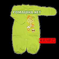 Человечек для новорожденного р. 56 с начесом ткань ФУТЕР 100% хлопок ТМ Виктория 3238 Зеленый