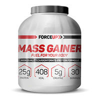 Гейнер Mass Gainer (3,0 кг) ForceUp