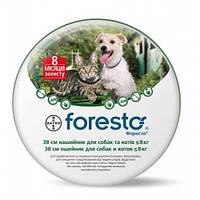 Ошейник от блох и клещей для небольших собак Bayer Foresto, 38 см