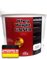 Гейнеры Activevites WHEY Weight Gainer (12% protein ) 2500g (Strawberry)