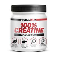 Креатин Creatine monohydrate (500 г) ForceUp