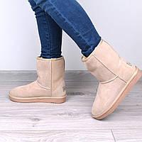 Угги женские UGG натуральная ЗАМША бежевые, зимняя обувь