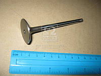 Клапан-INT/V96/DOHC PRINCE (Производство PMC-ESSENCE) HCZC-008