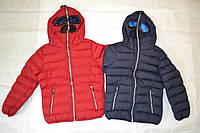 Куртка зимняя на синтепоне для мальчика Nature