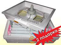 Инкубатор Квочка МИ-30-1Э + 2 подарка + поддержка!