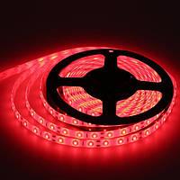 Светодиодная LED лента 5050 R (40) красная, лента для подсветки smd 5050, светодиодная лента красная