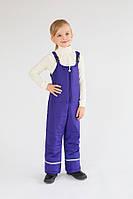Зимние штаны, детский полукомбинезон, синий, унисекс