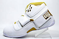 Баскетбольные кроссовки Nike Zoom Lebron