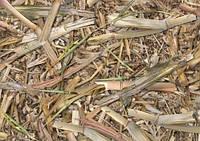 Пленка камуфляж (бамбук) A019