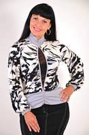 Блуза женская(БЛ 427470)