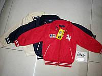 Ferrari Одежда Официальный Сайт