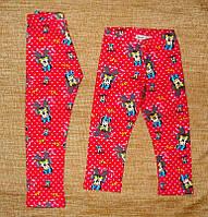 Лосины  для Девочки Минни Маус с Начесом Малиновые  Рост 98-128 см