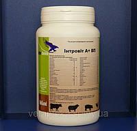 Интровит А+ВП 1 кг (Interchemie) водорастворимый комплекс витаминов, минералов и аминокислот.