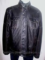 Куртки мужские  ТСМ (Германия)